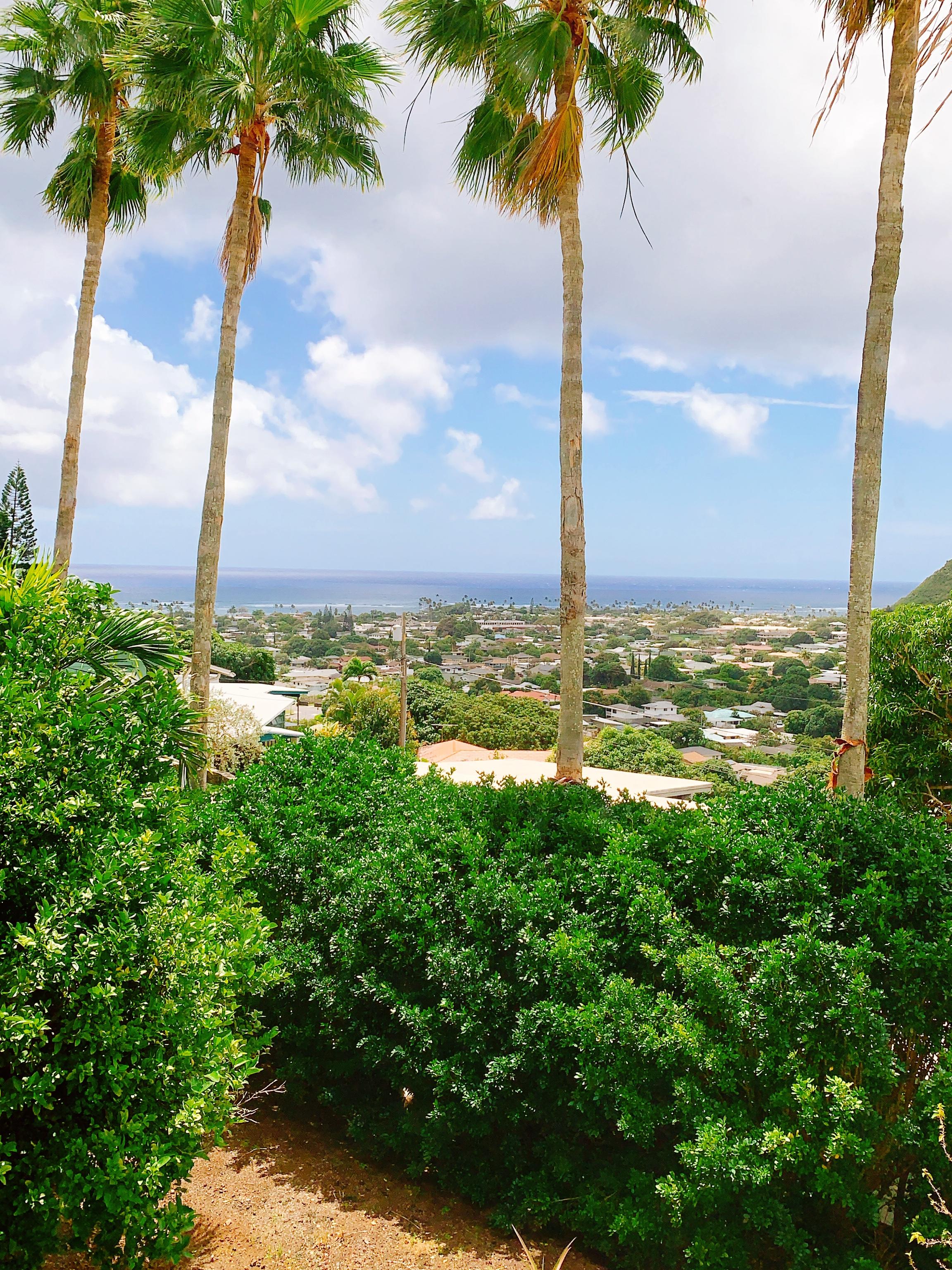フットソースハワイの臨時営業時間